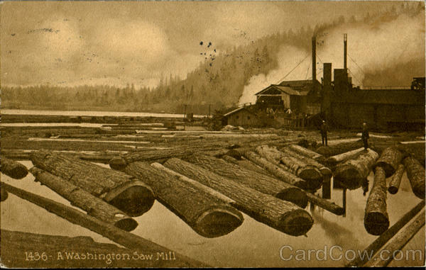 A Washington Saw Mill Scenic