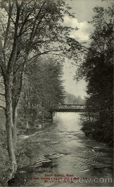 Brook Between Upper And Lower Lake, Mt. Holyoke College South Hadley Massachusetts