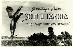 Greetings From South Dakota