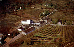 Widmer Wine Cellars Inc.
