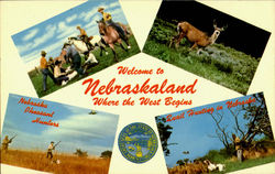 Welcome To Nebraskaland Postcard