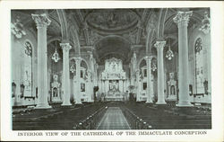 Interior View Of The Cathedral Of The Immaculate Conception