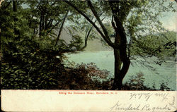 Along The Delaware River Postcard