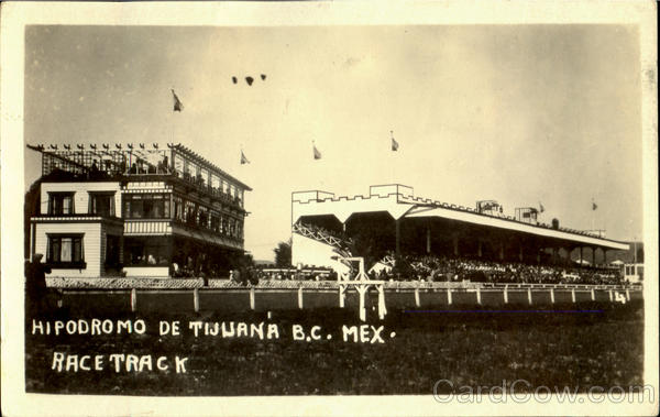 Race Track Tijuana Mexico Horse Racing
