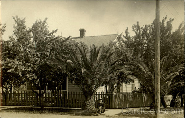 House with Palms and Picket Fence