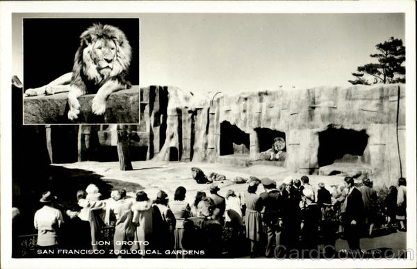 Lion Grotto, San Francisco Zoological Gardens California