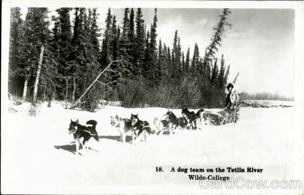 A Dog Team On The Tetlin River, Wilde College Alaska