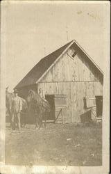 Farm Scene - Horses