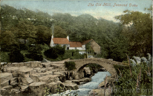 The OLd Mill,Fesmond Dene England