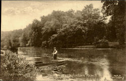 Mapledurham Reach Postcard
