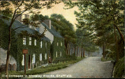 Old Cottages I Whiteley Woods Postcard