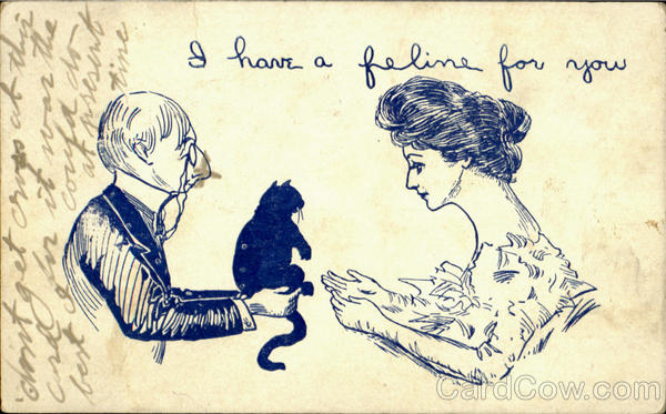 I Have A Feline For You Cats Romance & Love