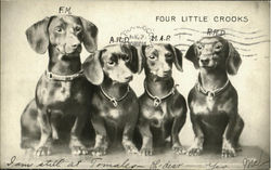 Four Little Crooks Daschunds