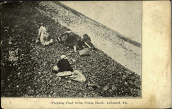Picking Coal From Culm Bank