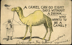 Who wants to be a camel?