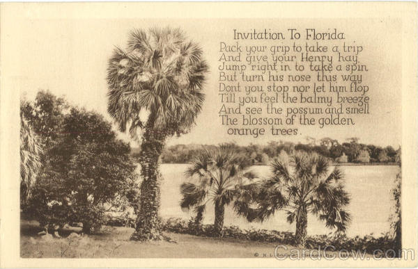 Invitation To Florida Scenic