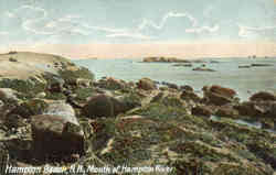 Mouth of Hampton River Postcard