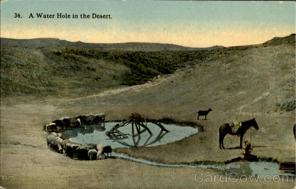 A Water Hole In The Desert Cowboy Western