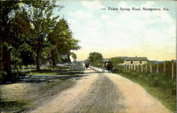 Pickets Springs Road