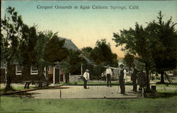 Croquet Grounds At Agua Caliente Springs