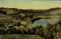 Butter Pond Postcard