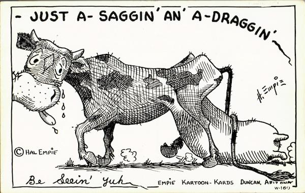 Just a saggin 'an' a-draggin' Cows & Cattle