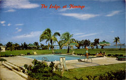 Beautiful Fresh Water Swimming Pool, Everglades National Park Postcard