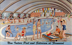New Indoor Pool And Solarium At Fernwood