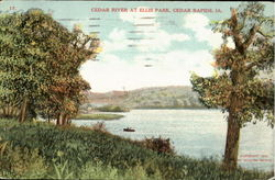 Cedar River At Ellis Park