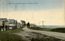 The Drive At Middle Beach Postcard