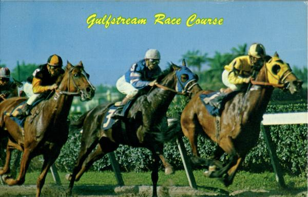 Gulfstream Race Course Hollywood Florida Horse Racing
