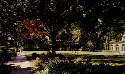 Women's Quadrangle, Northern Illinois University Postcard