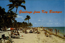 Greetings From Key Biscayne, Crandon Park Postcard