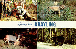 Greeting From Grayling
