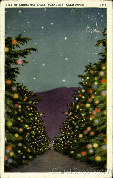 Christmas Tree Pasadena