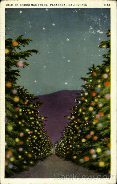 Mile Of Christmas Trees Pasadena California