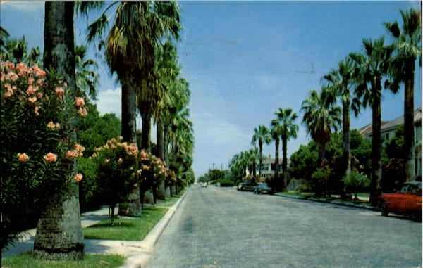 A Residential Street Scene In Beautiful Galveston Texas