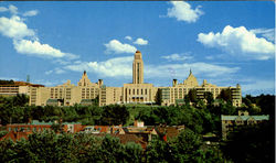 University Of Montreal Postcard