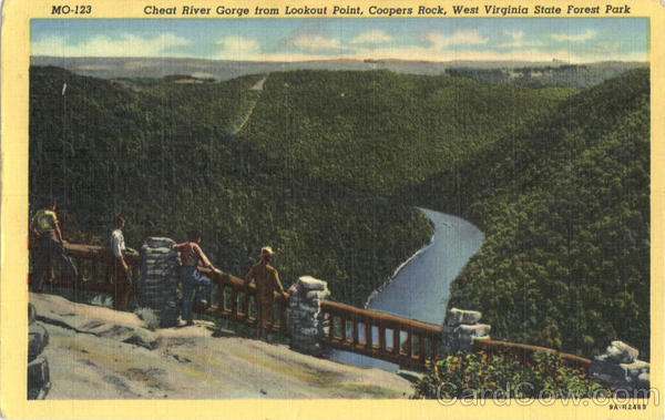 Cheat River Gorge from Lookout Point, Coopers Rock West Virginia State Forest Park