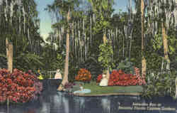 Reflection Pool, Cypress Gardens