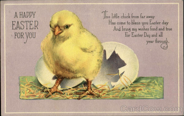A Happy Easter For You With Chicks