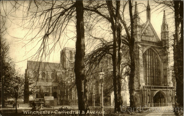 Winchester Cathedral & Avenue England