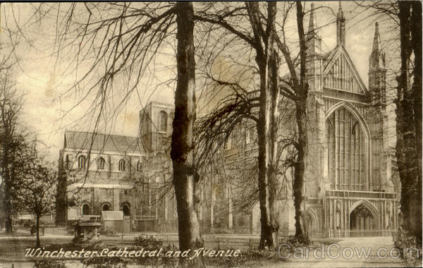Winchester Cathedral And Avenue England