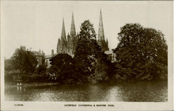 Litchfield Cathedral & Minster Pool