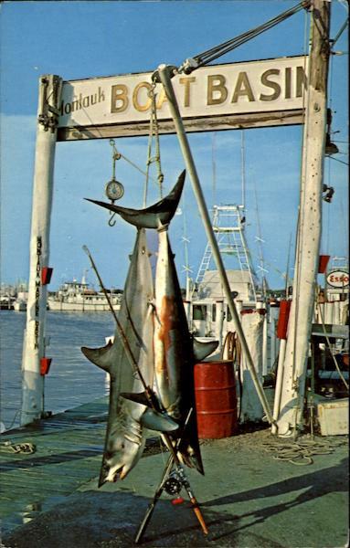 Montauk long island ny for Montauk fishing party boats