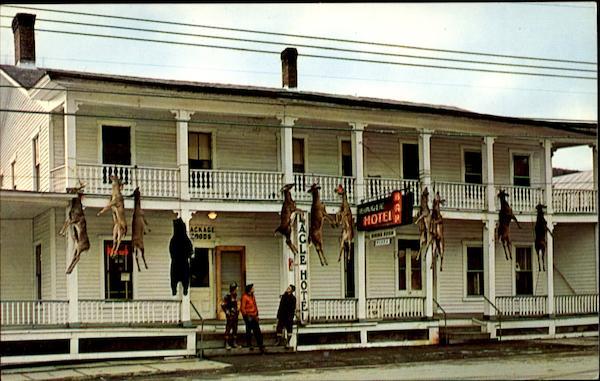 Eagle Hotel Downsville Ny