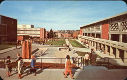 Paths To Knowledge, University of Idaho Campus Postcard