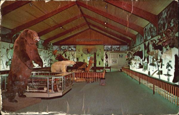 Fred bear museum looking for new home the michigan sportsman forums