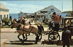 A Carriage Team On Main Street