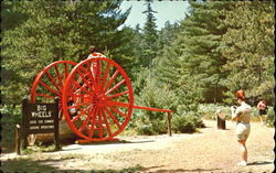 Logging Wheels, Hartwick Pines State Park